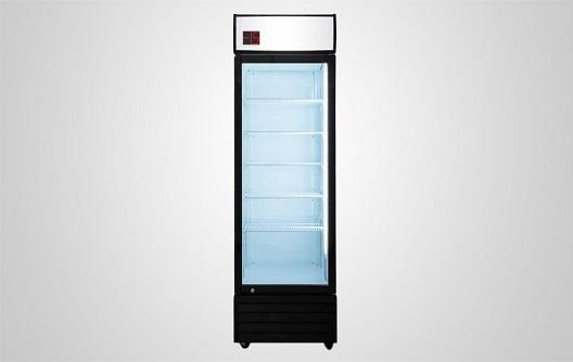 Procool Sub Zero Beverage Cooler Sz 420 Front
